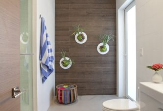PERFECT DECORATING IDEAS FOR MIAMI: INDOOR GARDENS - STAG HORN Ferns 3